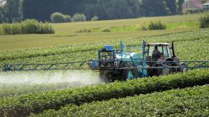 Responsabilité civile du viticulteur : corrélation entre l'utilisation de pesticides et troubles médicaux pointée du doigt